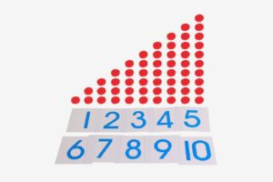 Montessori Mathematics Counting Cards