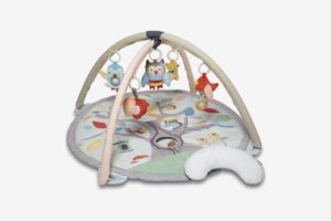 Skip Hop Baby Treetop Friends Activity Gym/Playmat