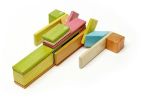 Tegu Magnetic Blocks